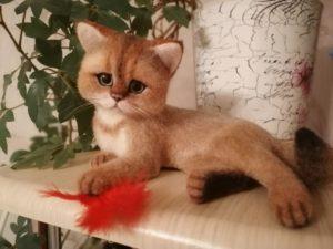 купить реального котенка с перышком из шерсти