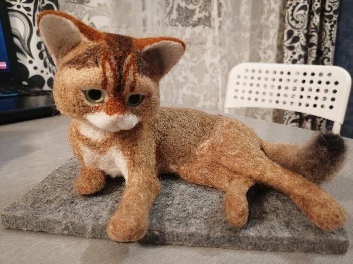 приваляла хвостик котенку